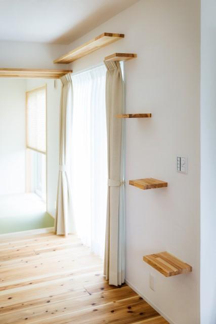 きみとぼくがシアターする平屋の家イメージ4